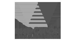 лого-вит-строй-воронеж
